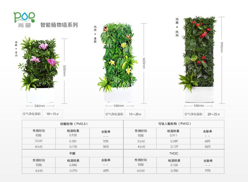 Bilder på växtväggarna.