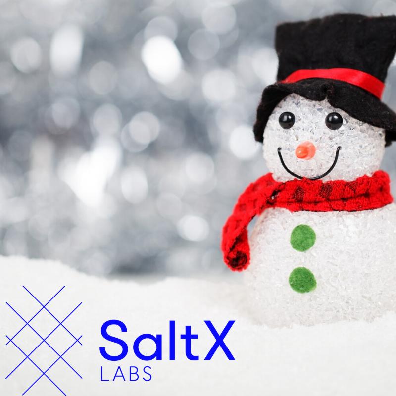 Småbolagskalendern SaltX