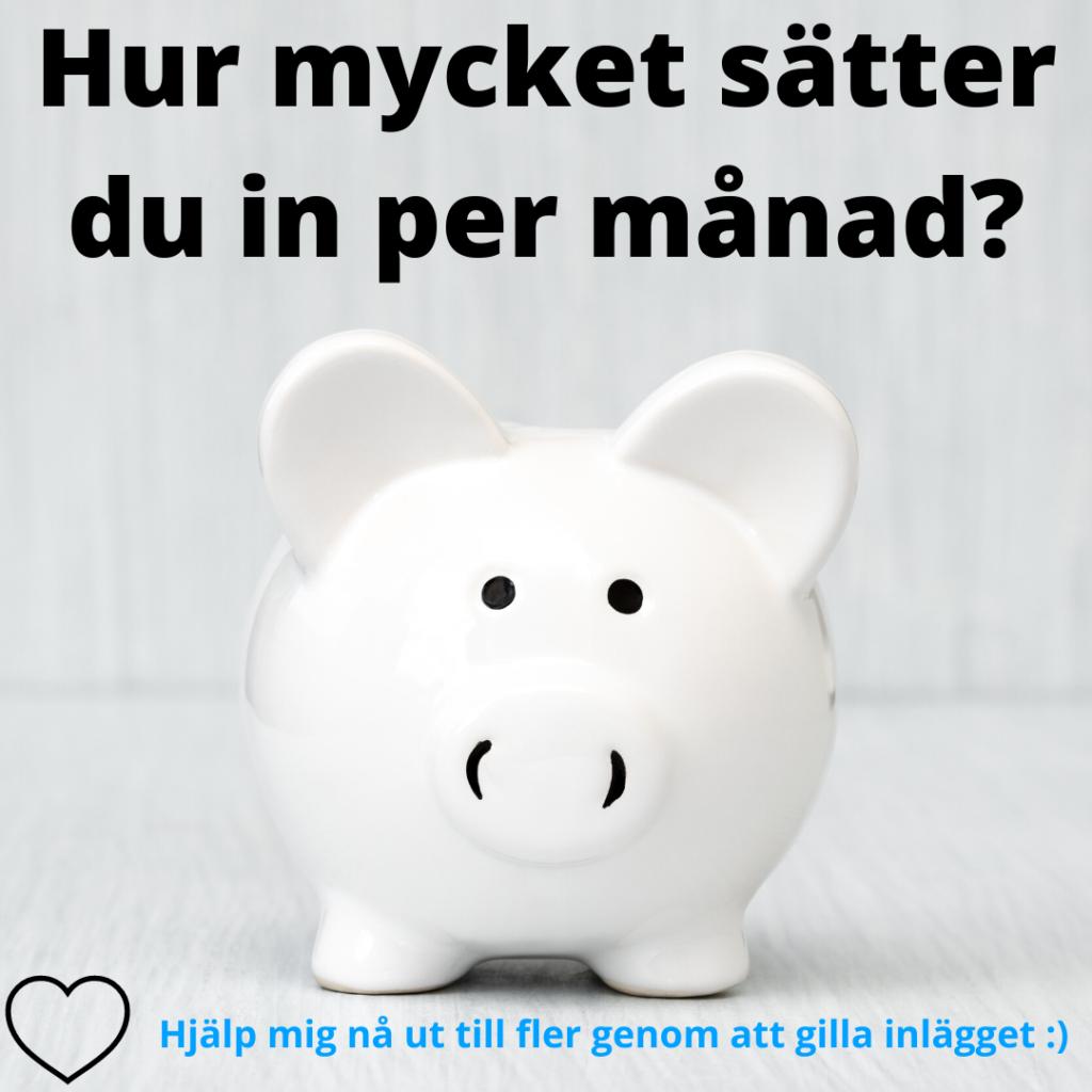 hur mycket sparar du per månad?